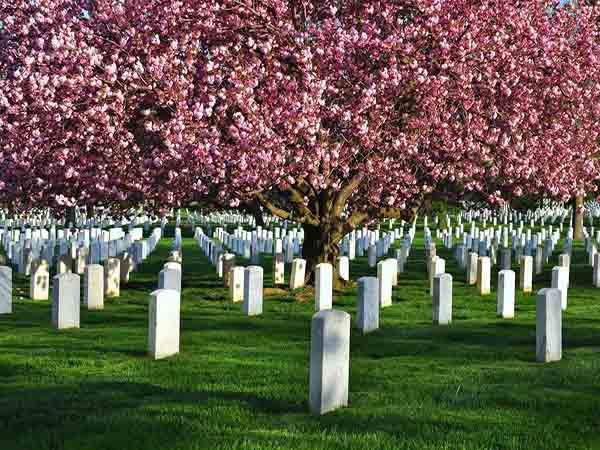 Mơ thấy nghĩa địa – Ngủ mơ thấy nghĩa địa có điềm báo gì