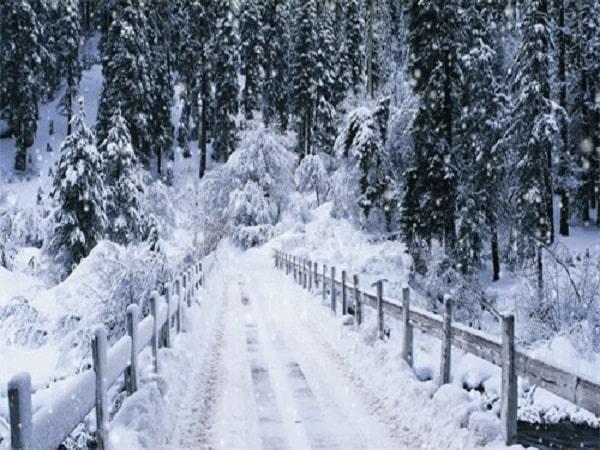 Nằm mơ thấy tuyết đánh con gì? số mấy? Ý nghĩa giấc mơ