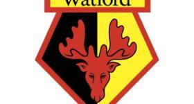 Câu lạc bộ bóng đá Watford – Lịch sử, thành tích của Câu lạc bộ